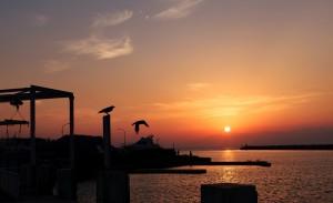 日本 好美 風景 海邊