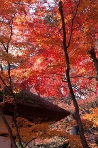 現在幾點 日文 怎麼講 日本語文法 入門
