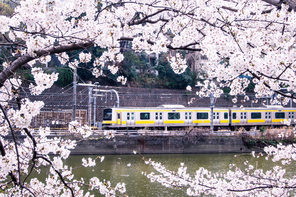 在日本 搭電車 旅遊 日文 車站