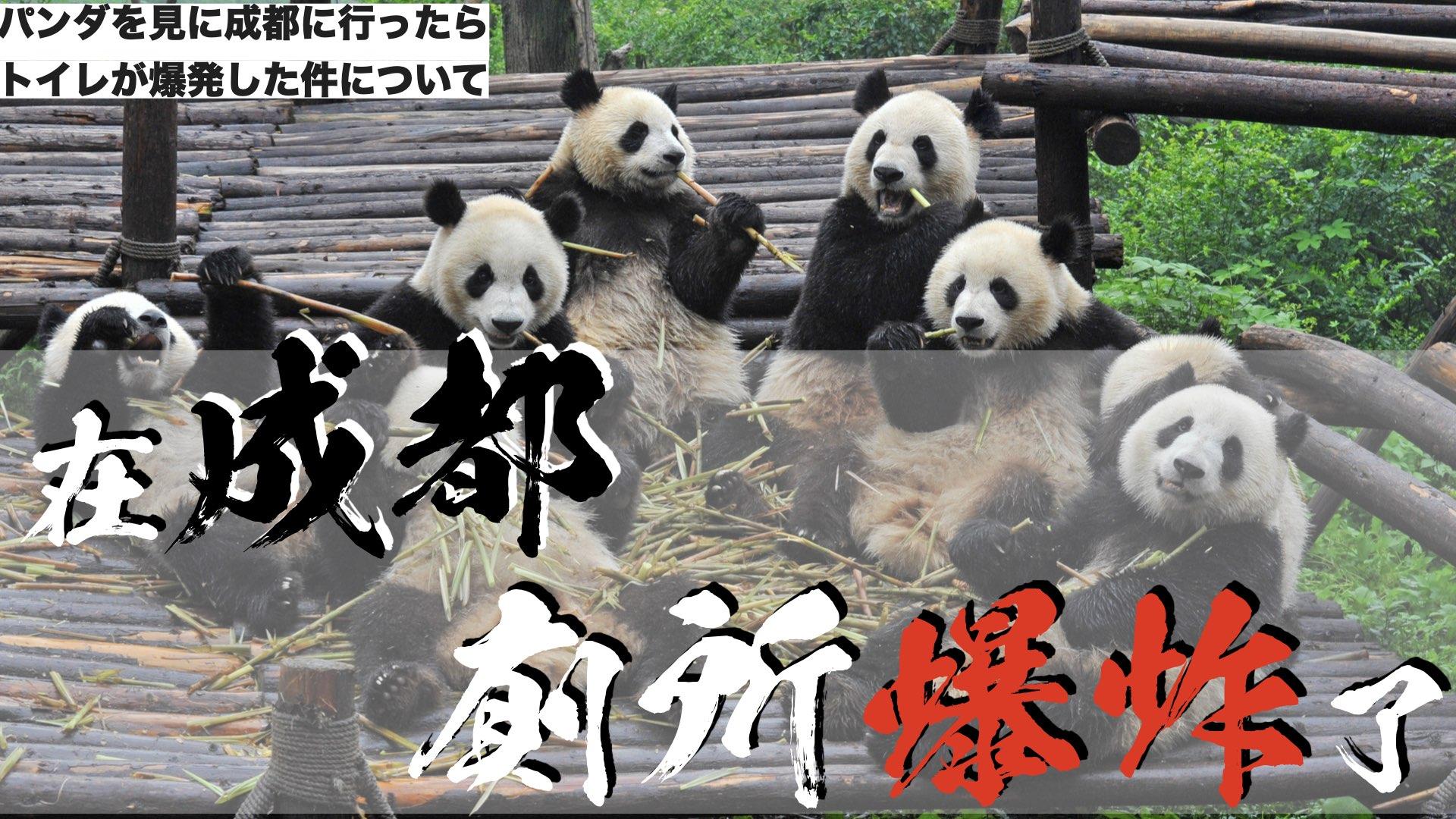 為了看熊貓去到成都後,所發生的廁所爆炸事件/パンダを見に成都に行ったらトイレが爆発した件について